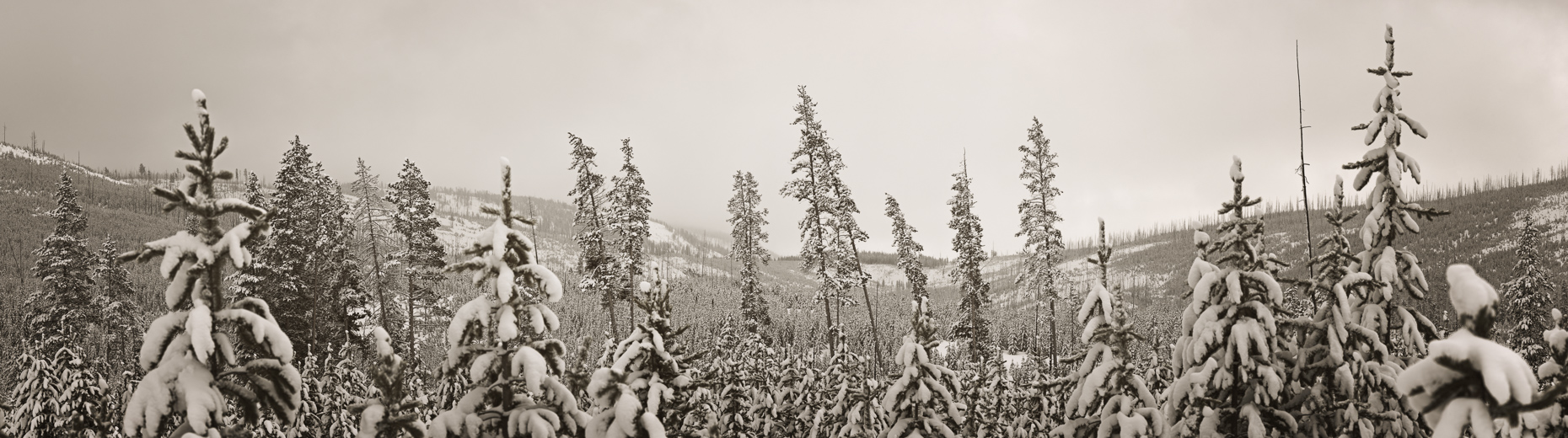 [Group 2]-2012.3.18-20-Teton_0752_2012.3.18-20-Teton_0805-54 images_a